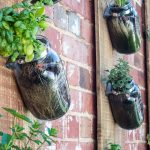 Five Ideas For Your Vertical Herb Garden