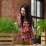 Indoor Gardening Tips For A Better Yield