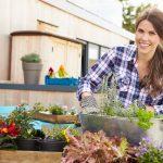 DIY Garden Ideas And Tips